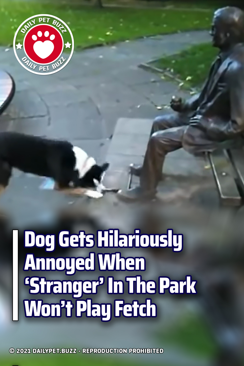 Dog Gets Hilariously Annoyed When \'Stranger\' In The Park Won\'t Play Fetch