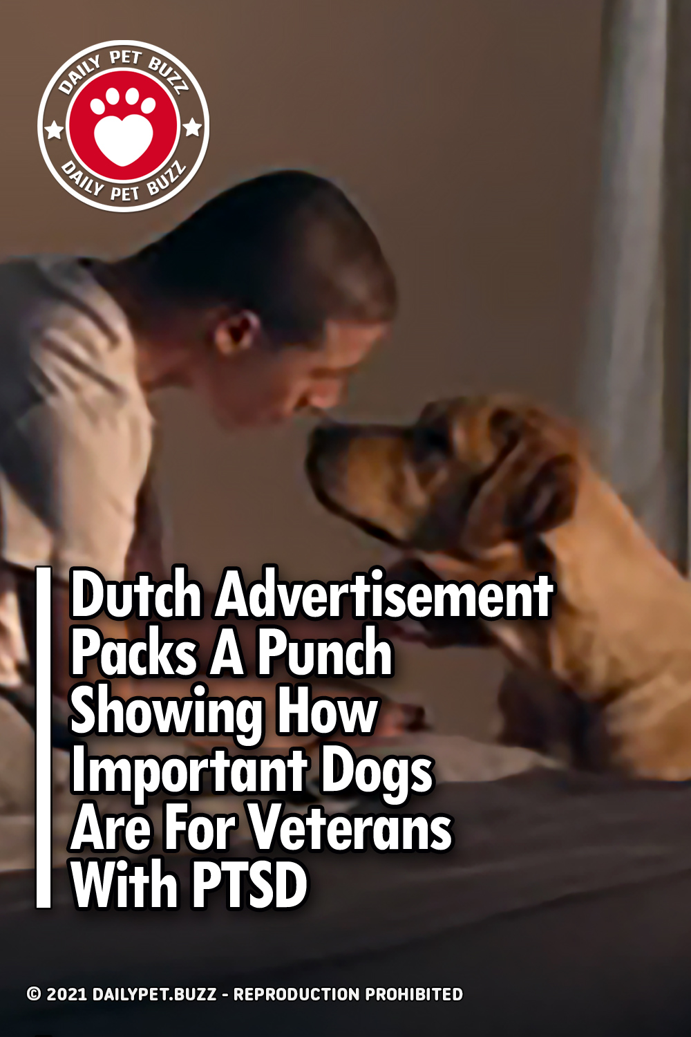 Dutch Advertisement Packs A Punch Showing How Important Dogs Are For Veterans With PTSD