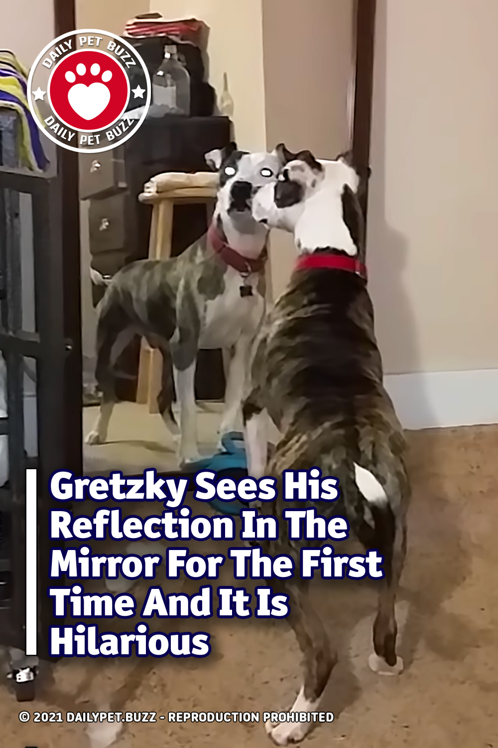 Gretzky Sees His Reflection In The Mirror For The First Time And It Is Hilarious