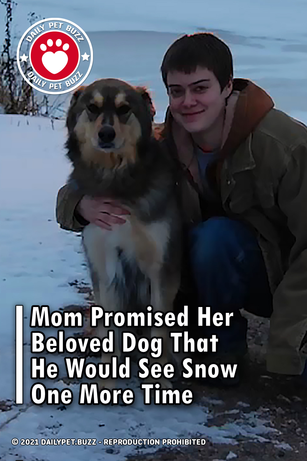 Mom Promised Her Beloved Dog That He Would See Snow One More Time