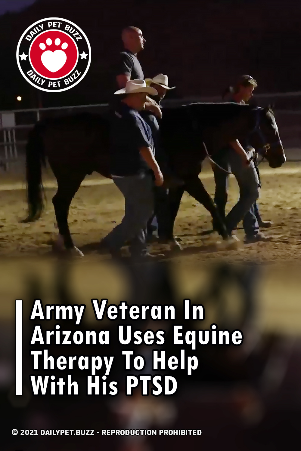 Army Veteran In Arizona Uses Equine Therapy To Help With His PTSD
