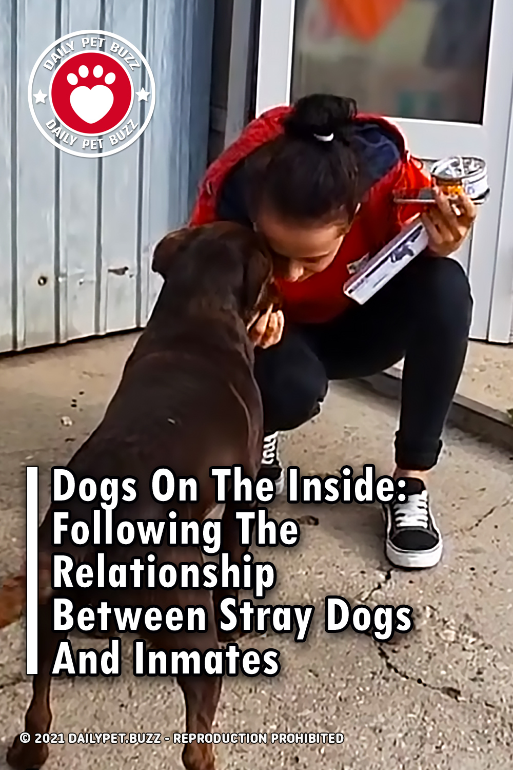 Dogs On The Inside: Following The Relationship Between Stray Dogs And Inmates