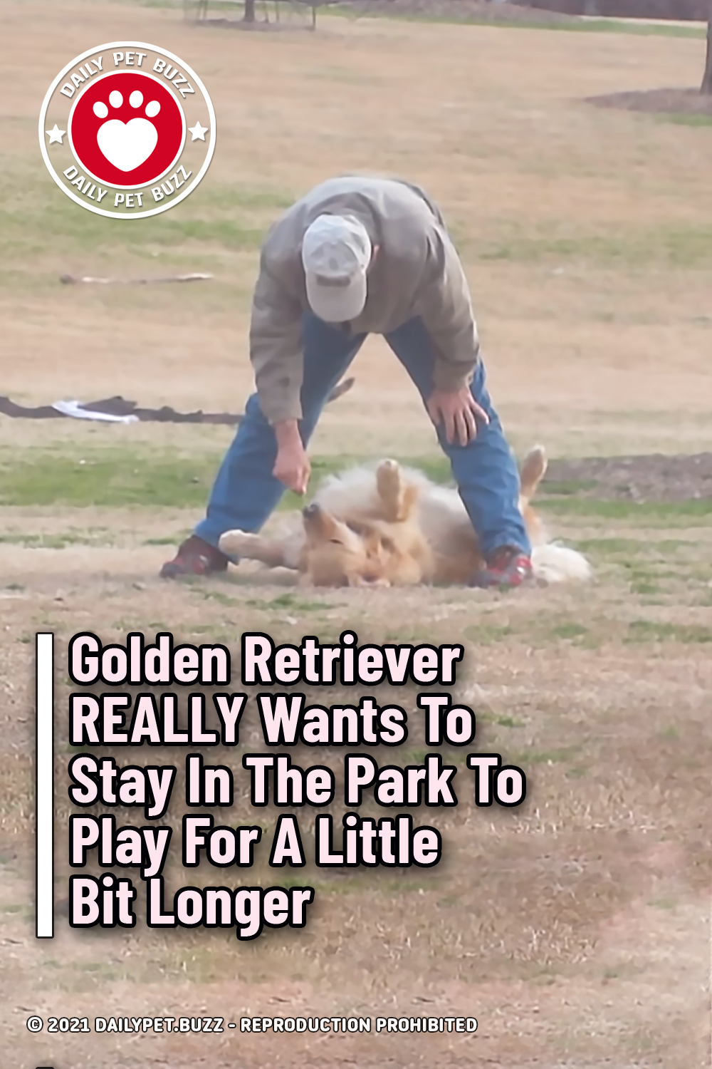 Golden Retriever REALLY Wants To Stay In The Park To Play For A Little Bit Longer