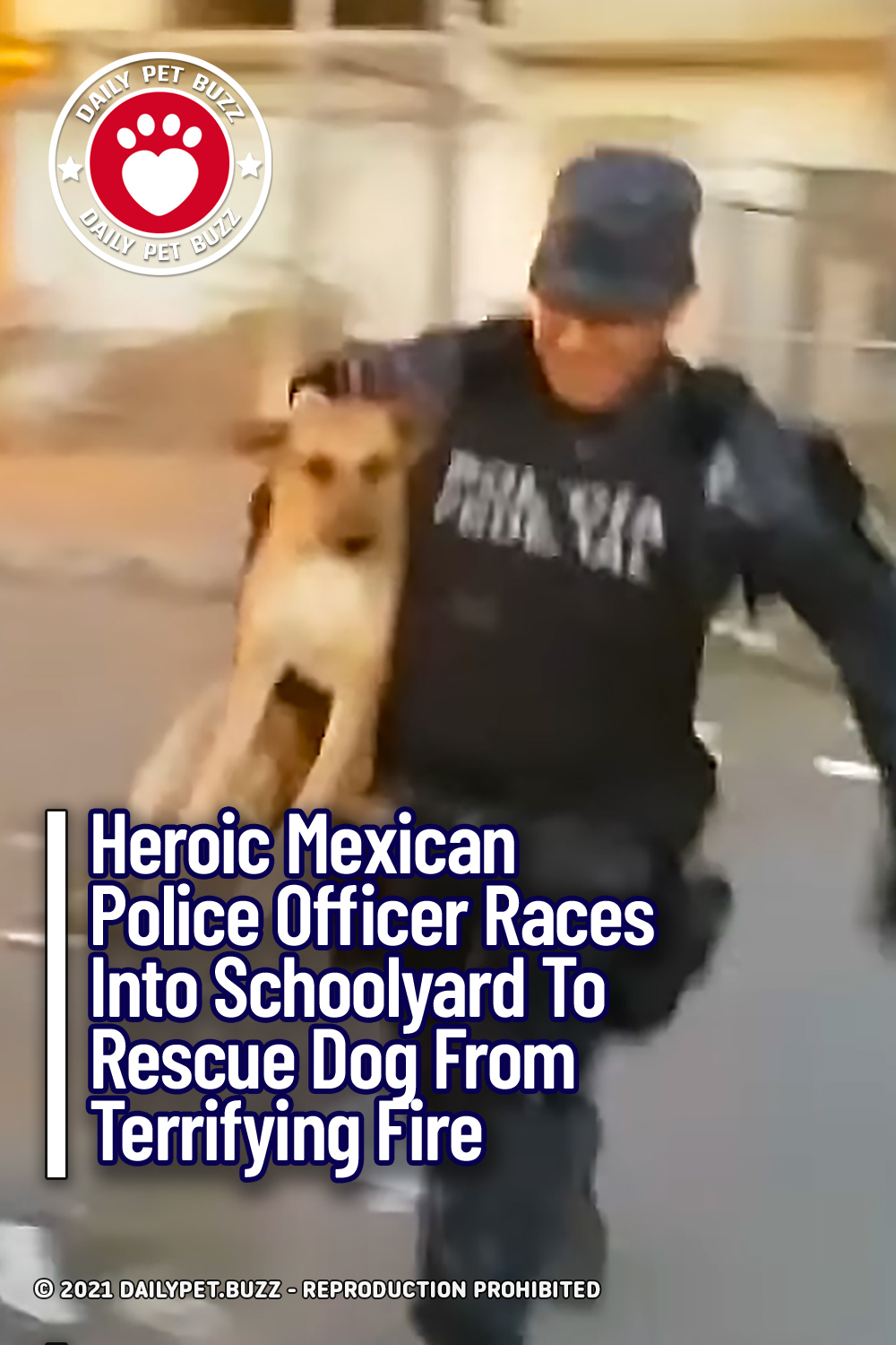 Heroic Mexican Police Officer Races Into Schoolyard To Rescue Dog From Terrifying Fire