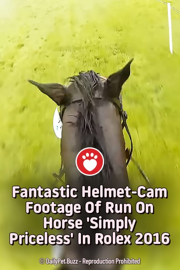 Fantastic Helmet-Cam Footage Of Run On Horse \'Simply Priceless\' In Rolex 2016