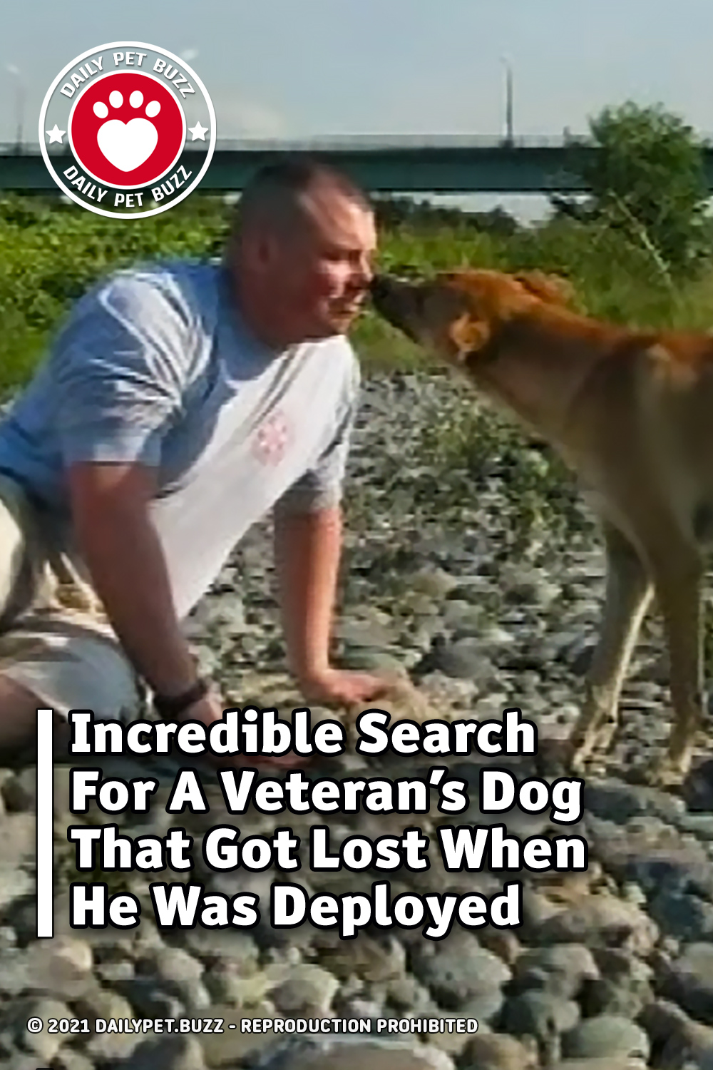 Incredible Search For A Veteran\'s Dog That Got Lost When He Was Deployed