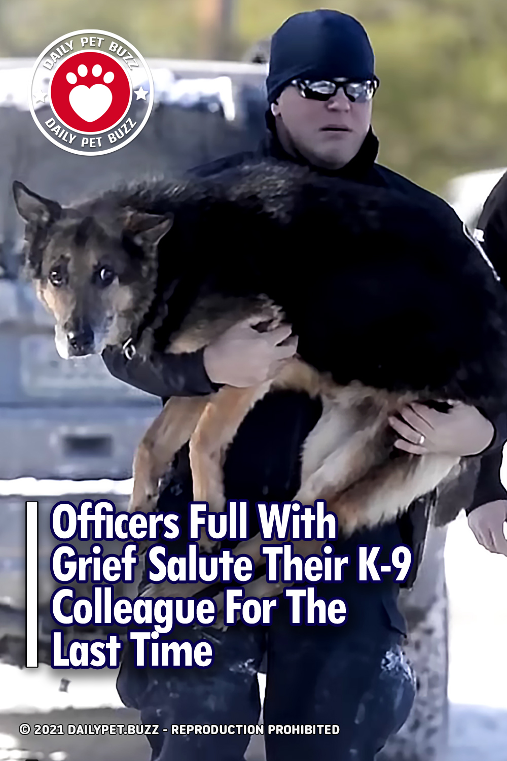 Officers Full With Grief Salute Their K-9 Colleague For The Last Time