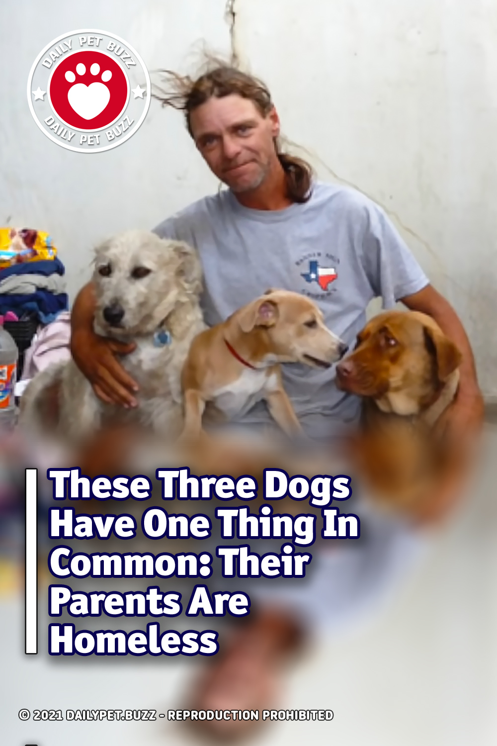 These Three Dogs Have One Thing In Common: Their Parents Are Homeless