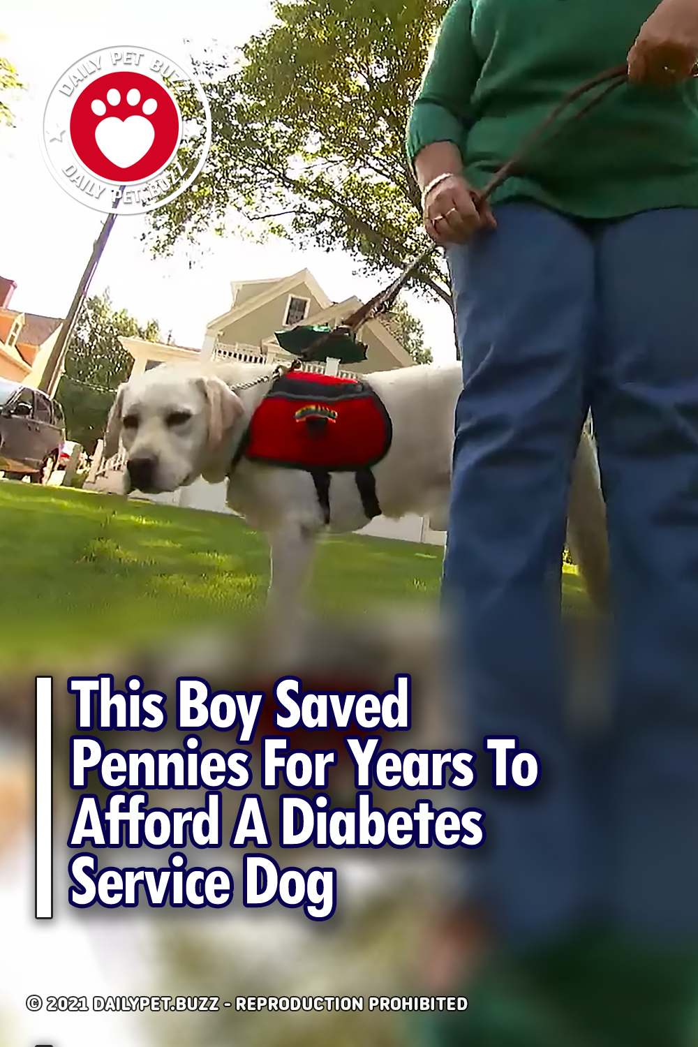 This Boy Saved Pennies For Years To Afford A Diabetes Service Dog