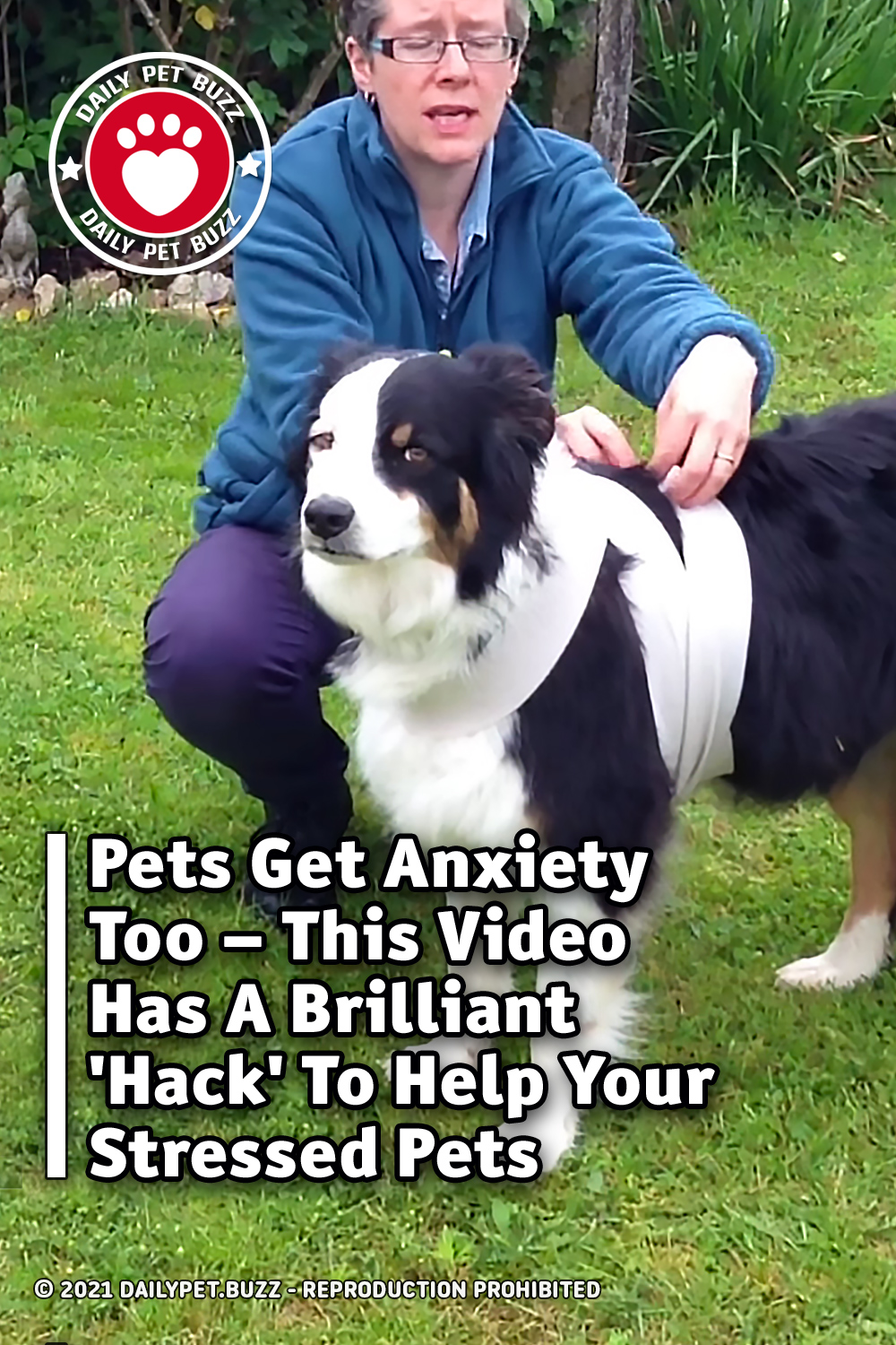 Pets Get Anxiety Too – This Video Has A Brilliant \'Hack\' To Help Your Stressed Pets