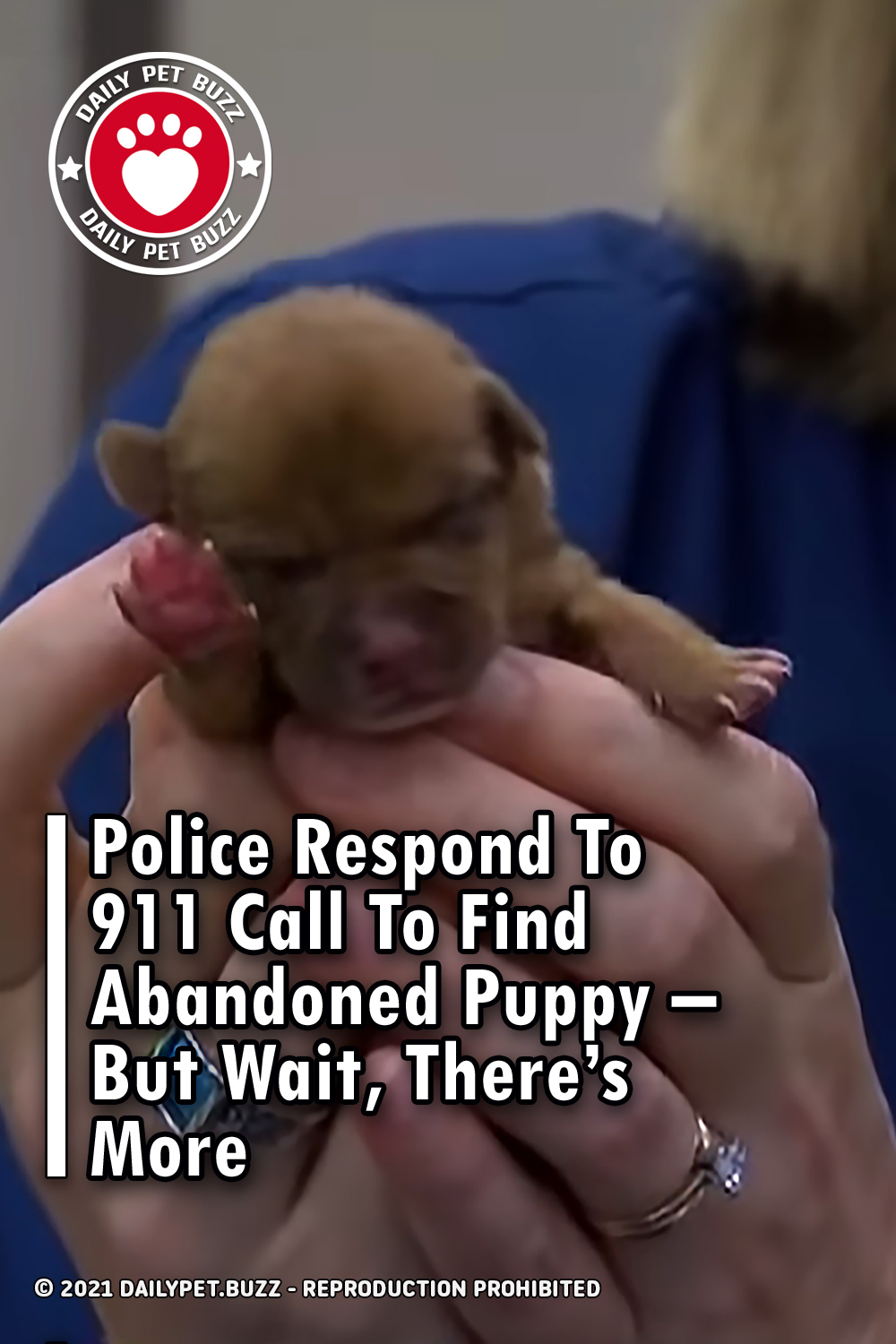 Police Respond To 911 Call To Find Abandoned Puppy – But Wait, There\'s More