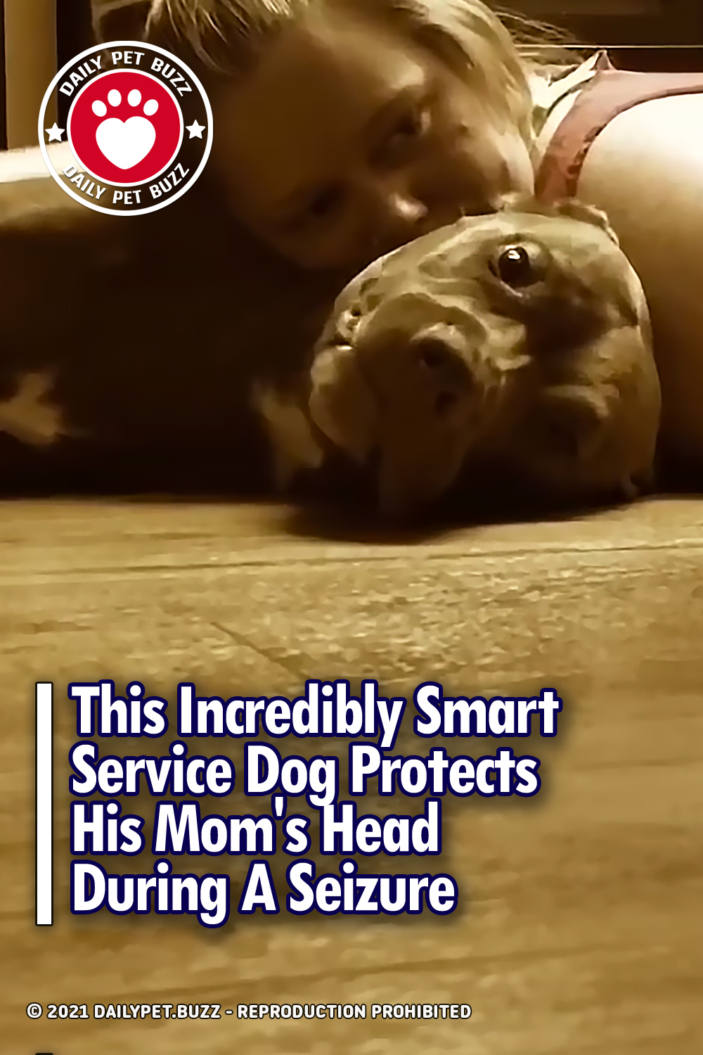 This Incredibly Smart Service Dog Protects His Mom\'s Head During A Seizure