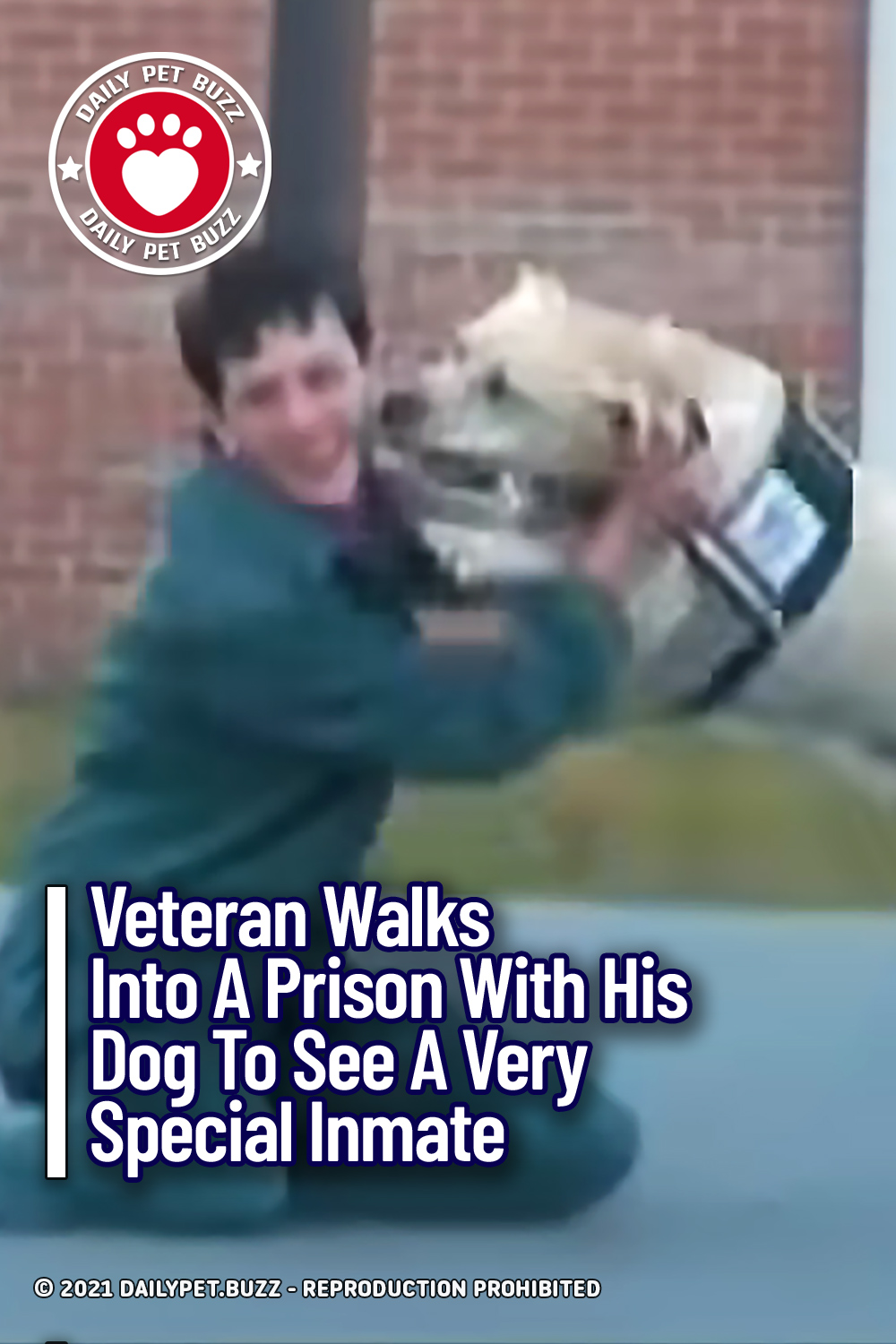 Veteran Walks Into A Prison With His Dog To See A Very Special Inmate