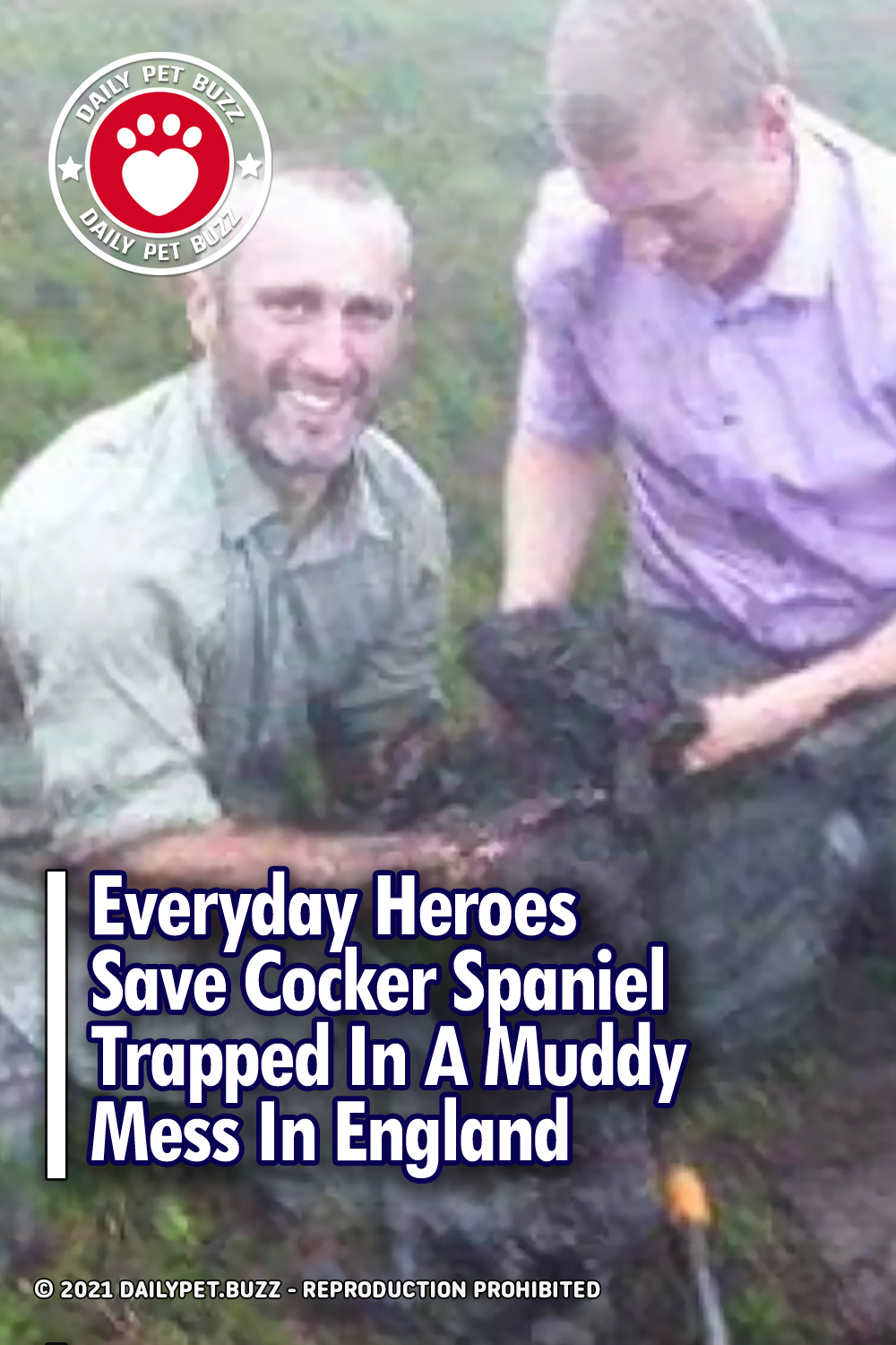 Everyday Heroes Save Cocker Spaniel Trapped In A Muddy Mess In England