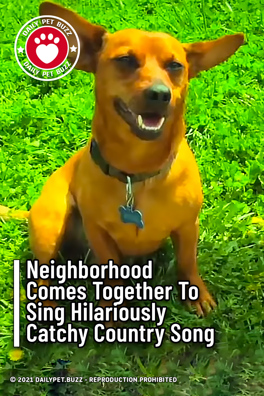 Neighborhood Comes Together To Sing Hilariously Catchy Country Song