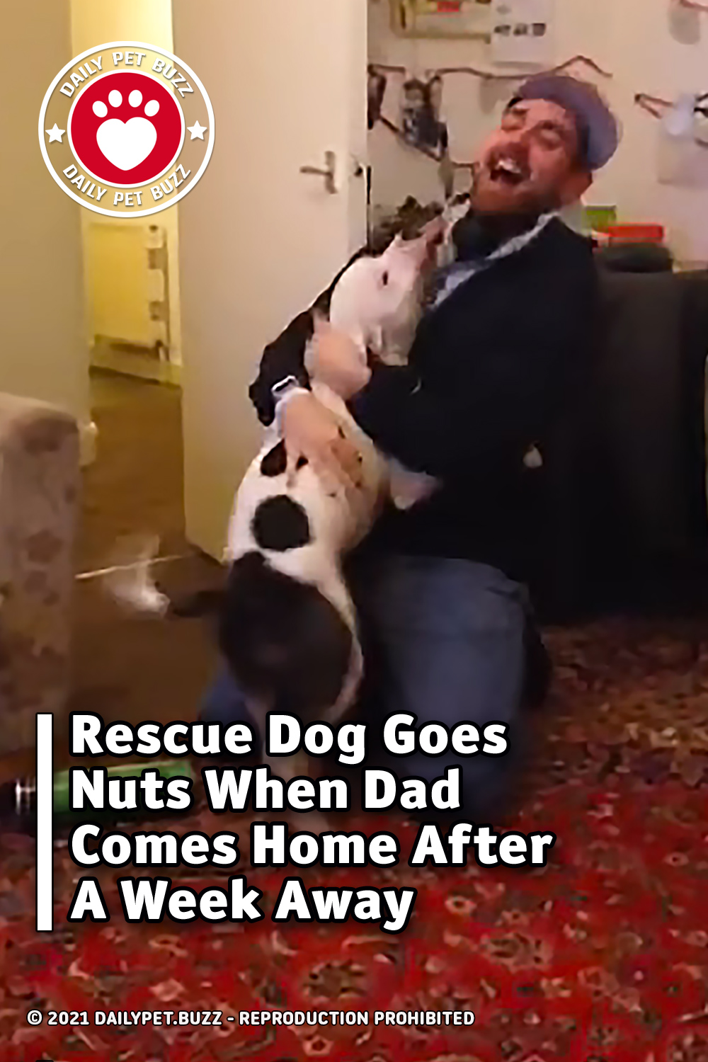 Rescue Dog Goes Nuts When Dad Comes Home After A Week Away