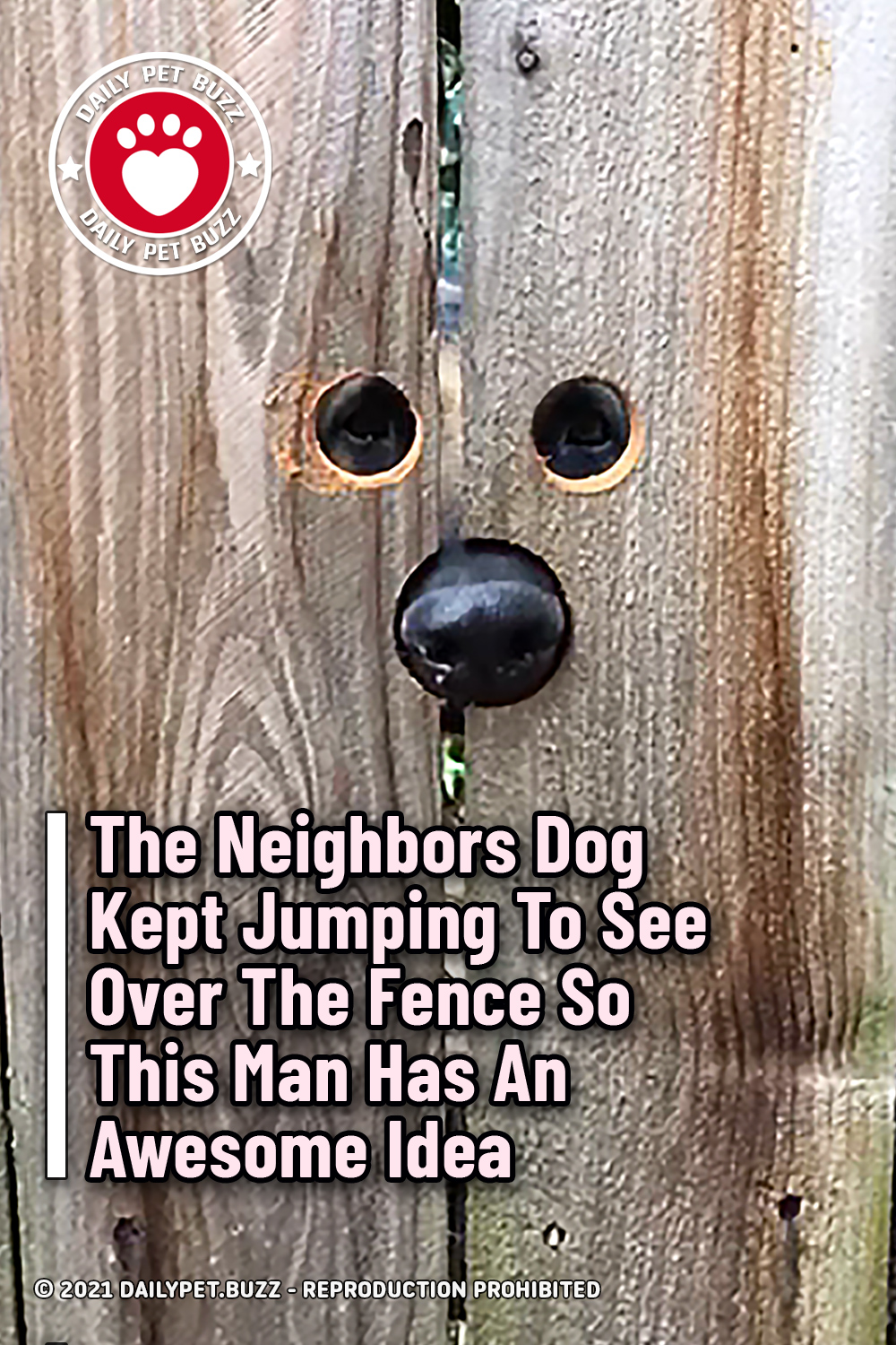 The Neighbors Dog Kept Jumping To See Over The Fence So This Man Has An Awesome Idea