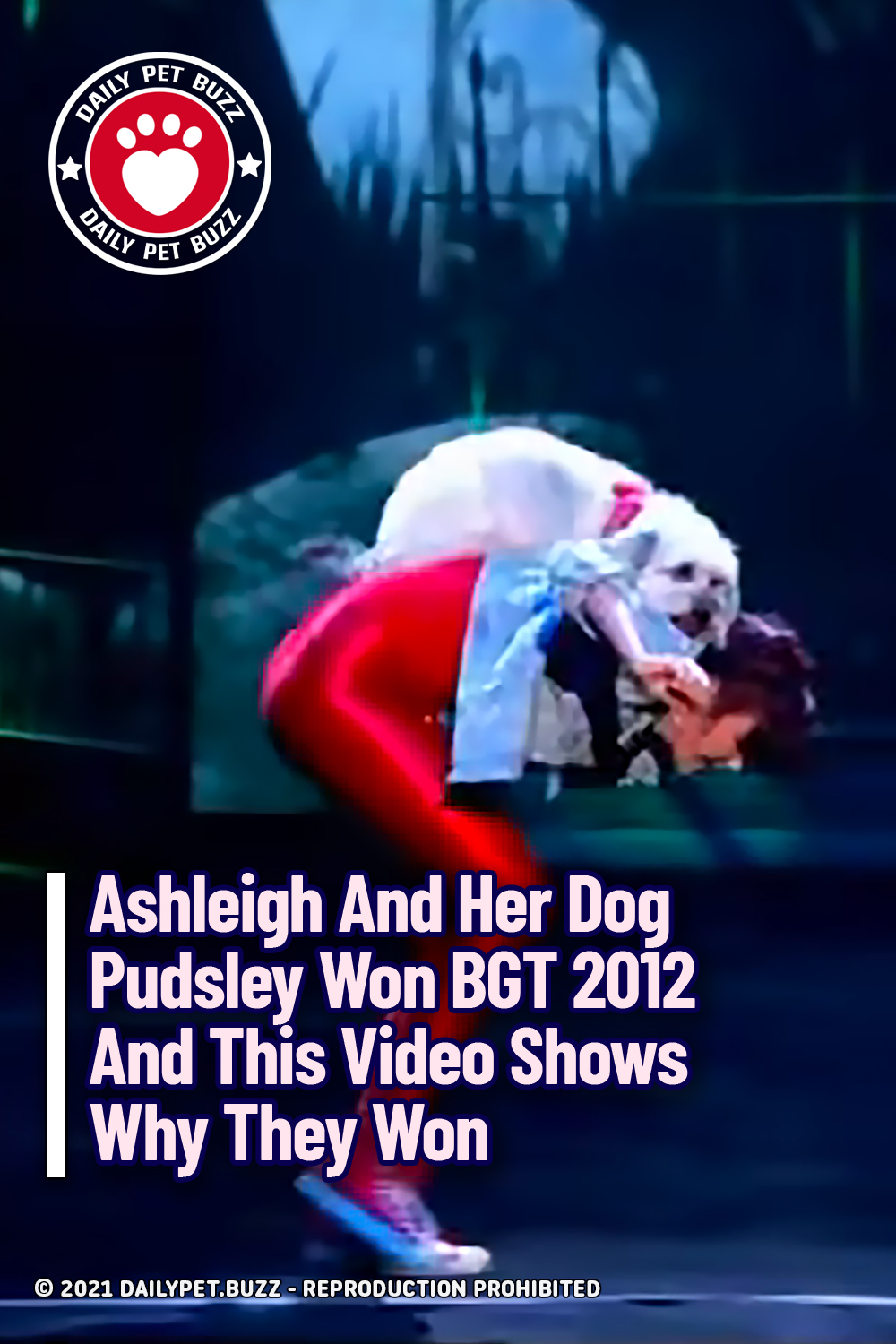 Ashleigh And Her Dog Pudsley Won BGT 2012 And This Video Shows Why They Won