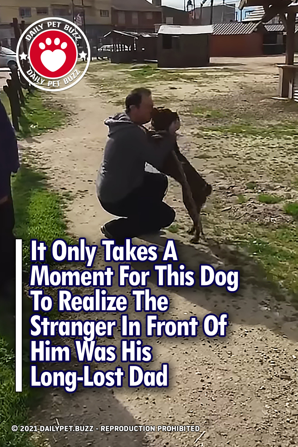 It Only Takes A Moment For This Dog To Realize The Stranger In Front Of Him Was His Long-Lost Dad