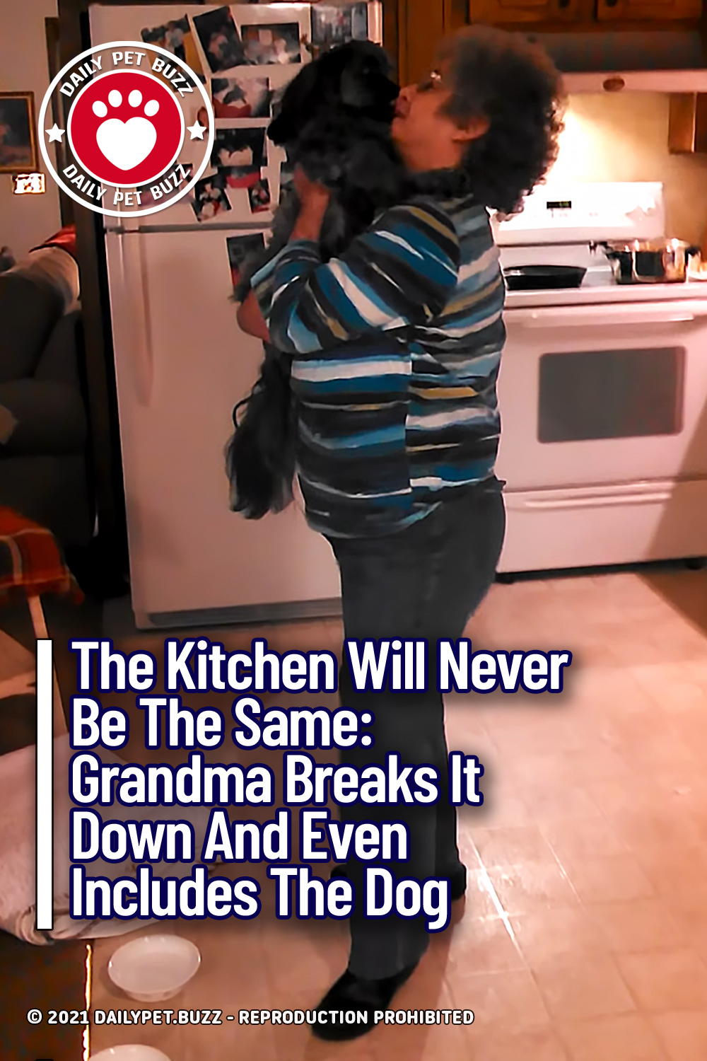 The Kitchen Will Never Be The Same: Grandma Breaks It Down And Even Includes The Dog