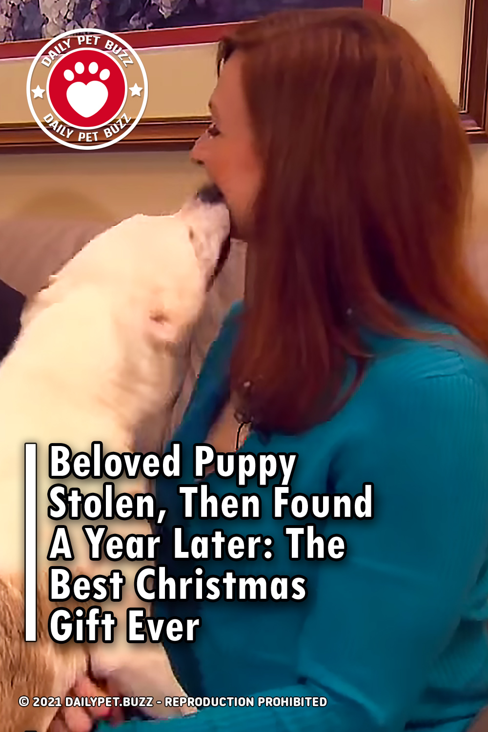Beloved Puppy Stolen, Then Found A Year Later: The Best Christmas Gift Ever