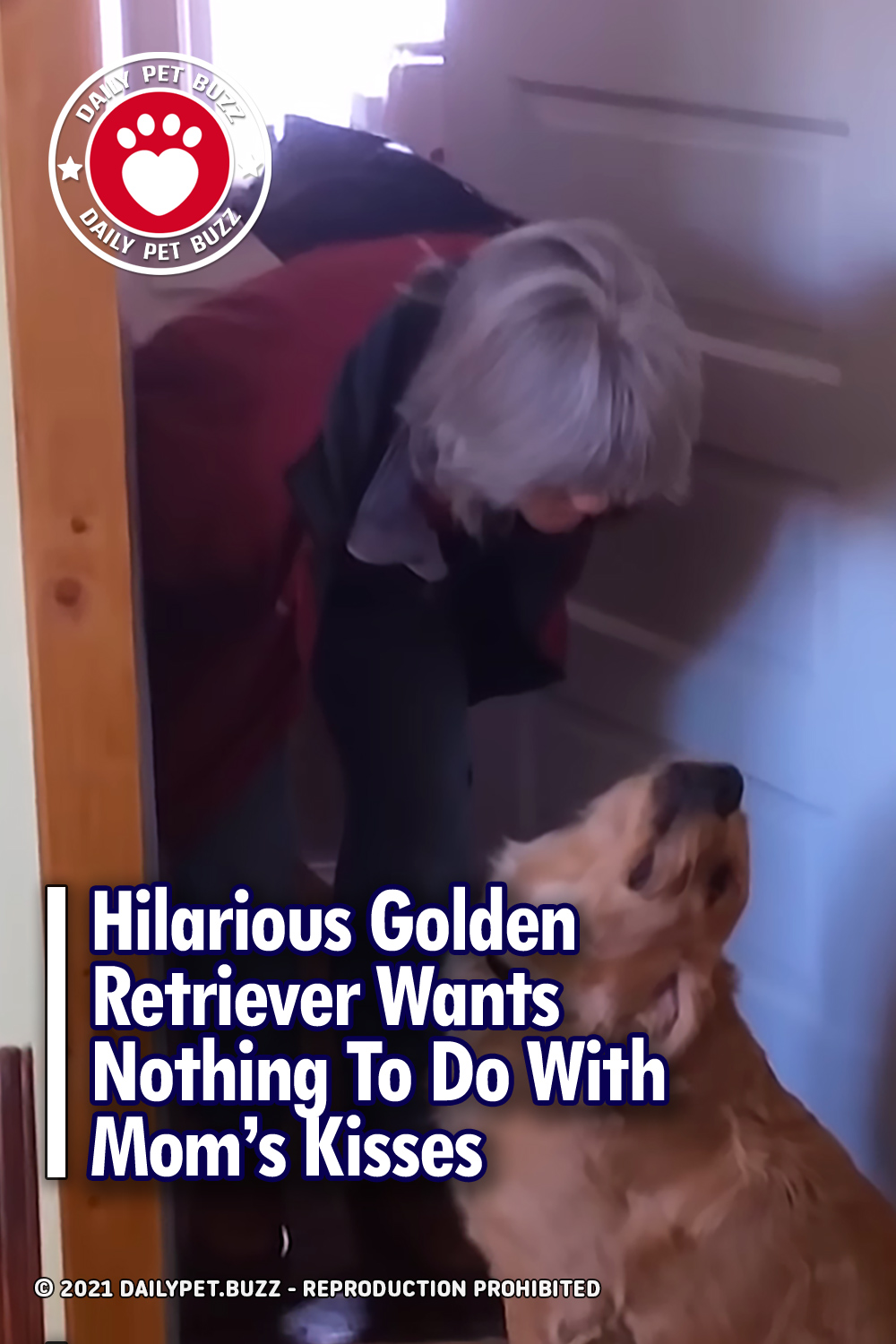 Hilarious Golden Retriever Wants Nothing To Do With Mom\'s Kisses