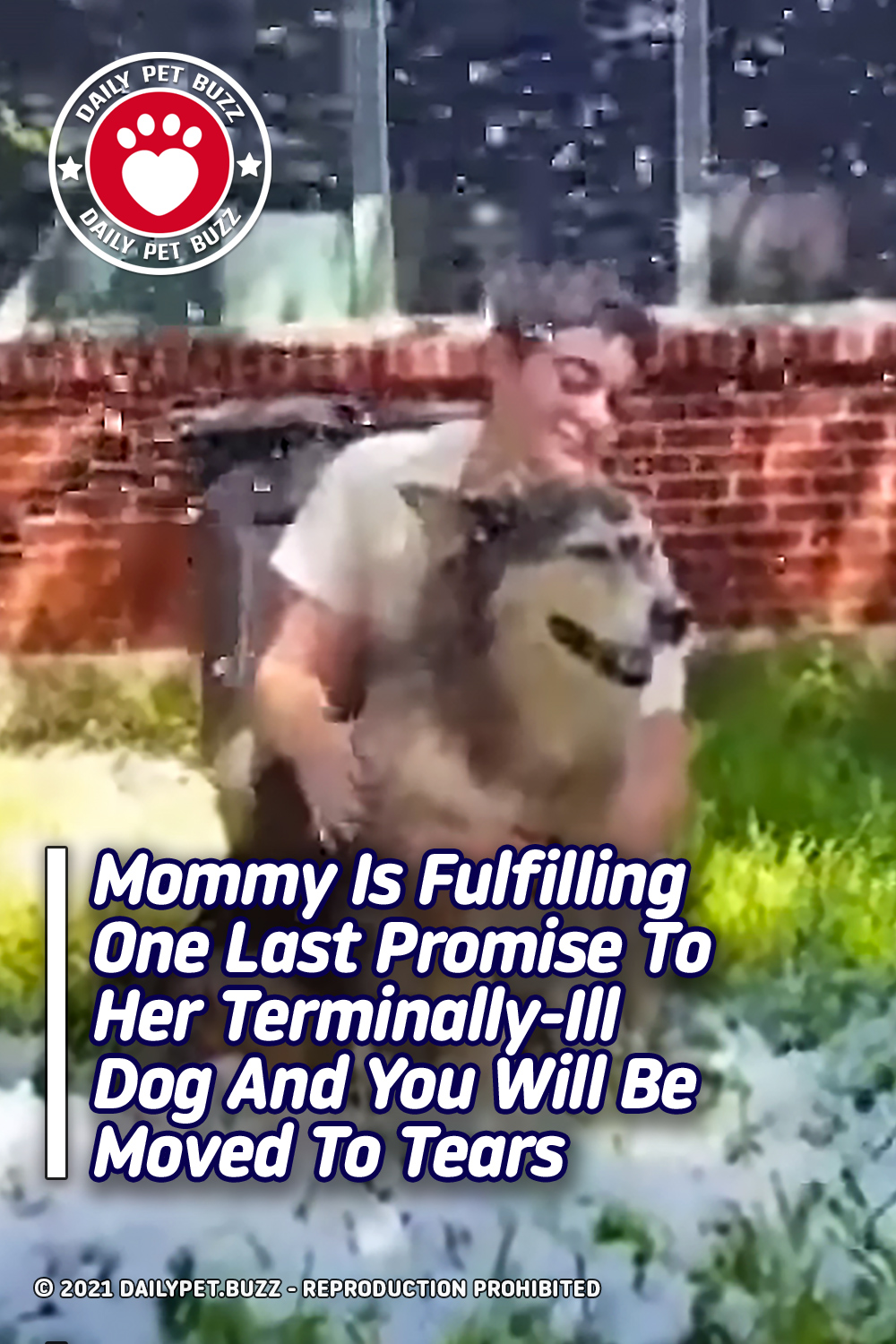 Mommy Is Fulfilling One Last Promise To Her Terminally-Ill Dog And You Will Be Moved To Tears