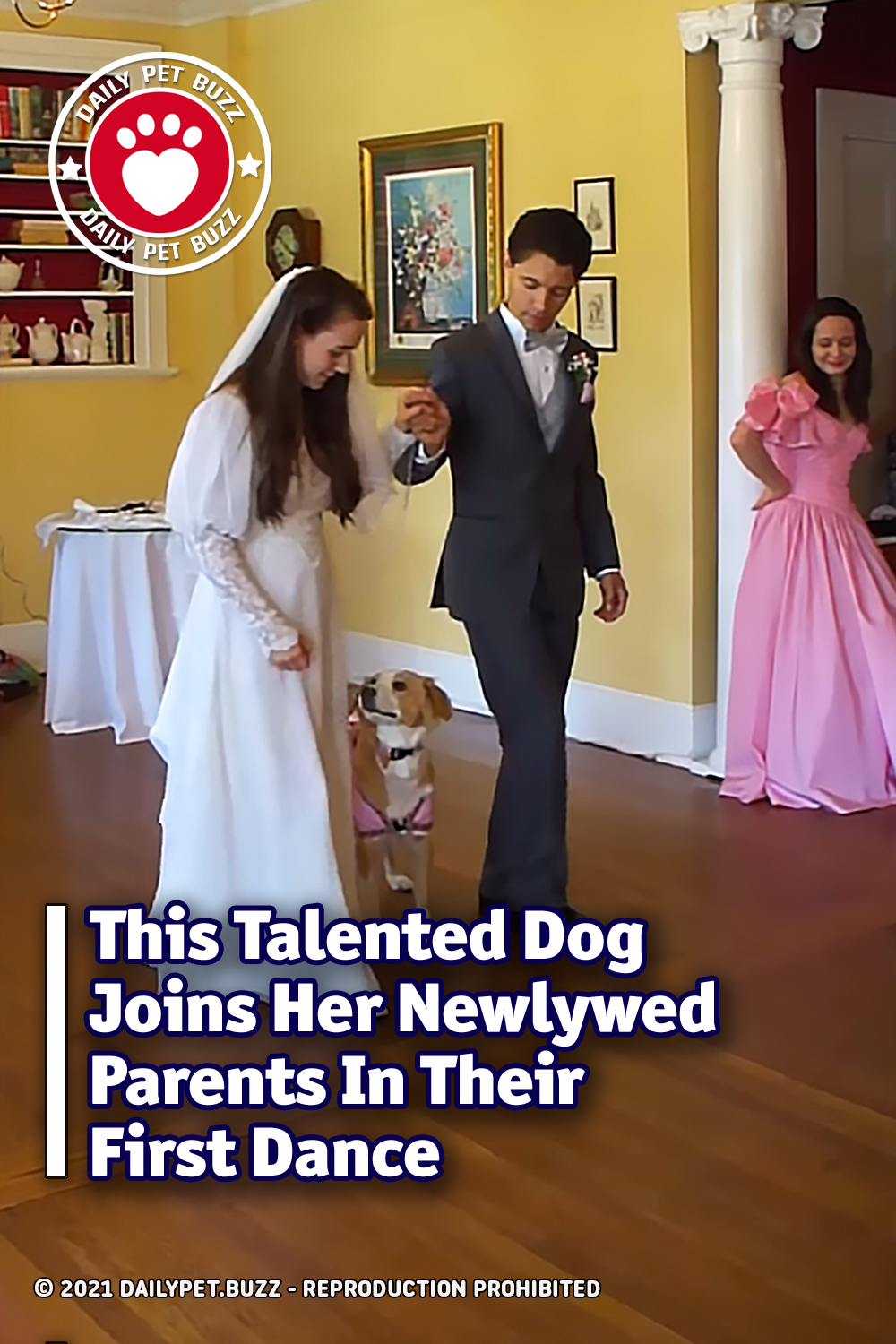 This Talented Dog Joins Her Newlywed Parents In Their First Dance