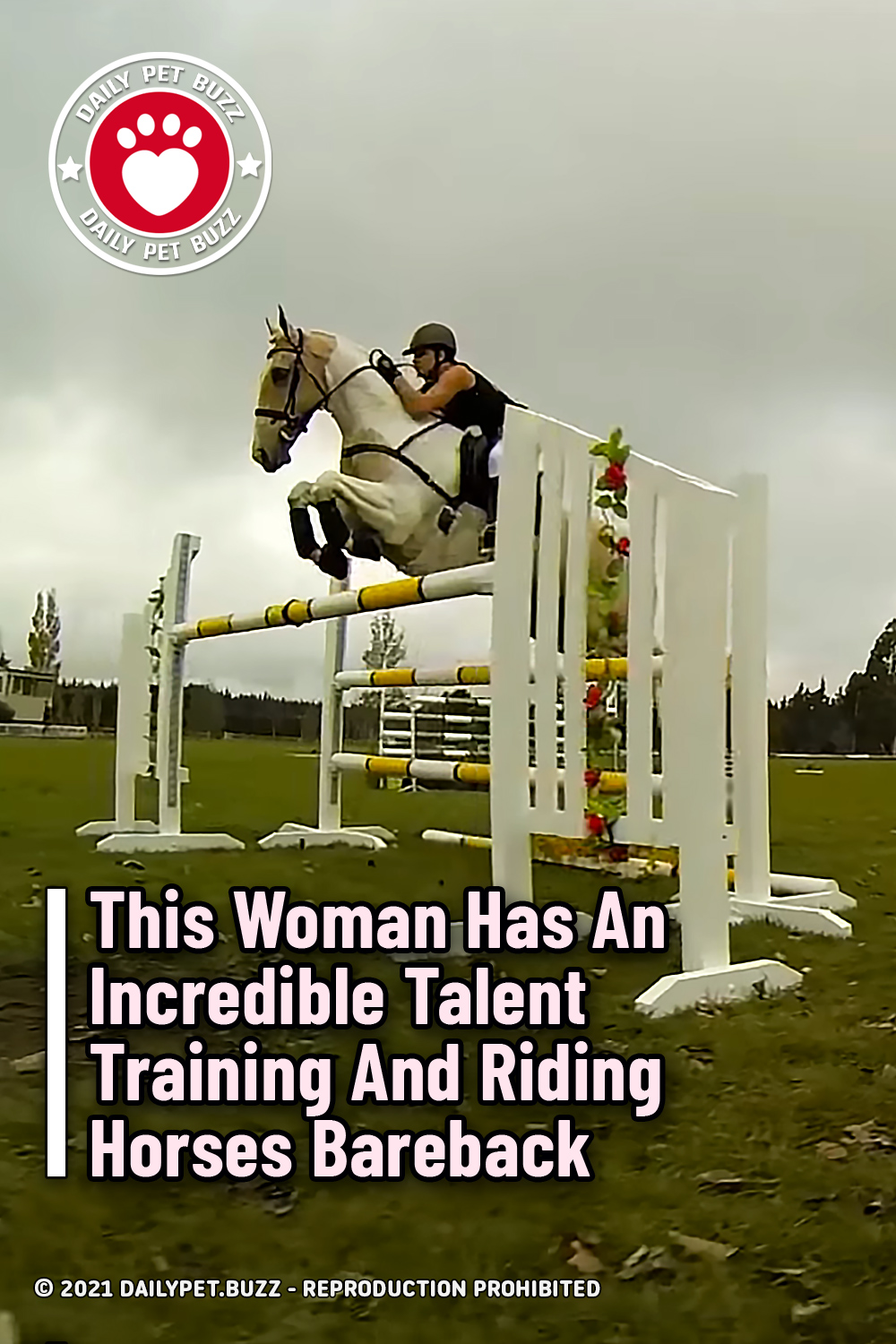 This Woman Has An Incredible Talent Training And Riding Horses Bareback