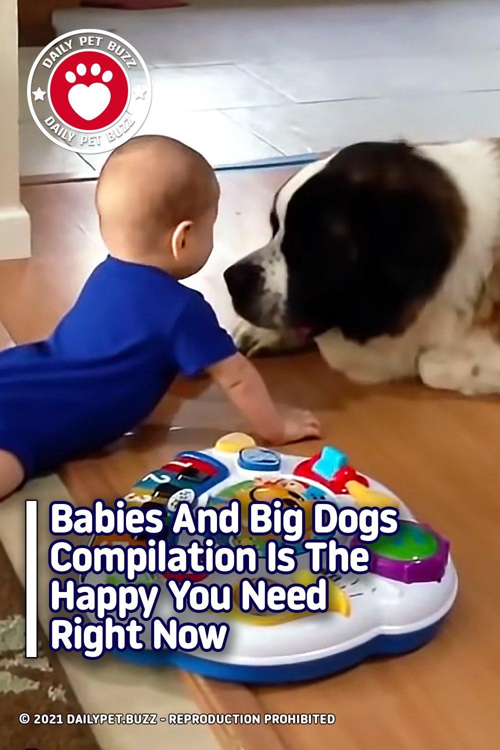 Babies And Big Dogs Compilation Is The Happy You Need Right Now