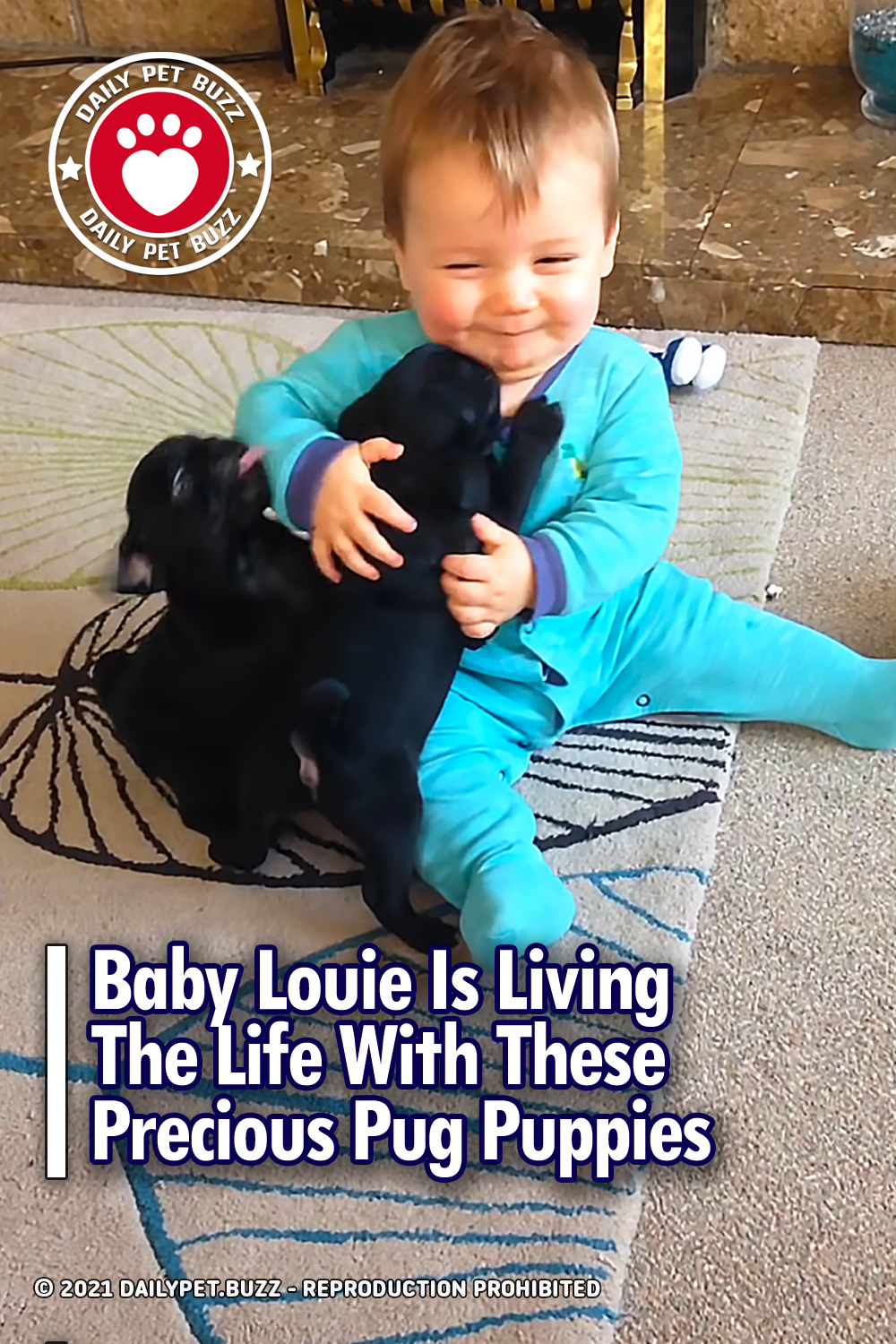 Baby Louie Is Living The Life With These Precious Pug Puppies