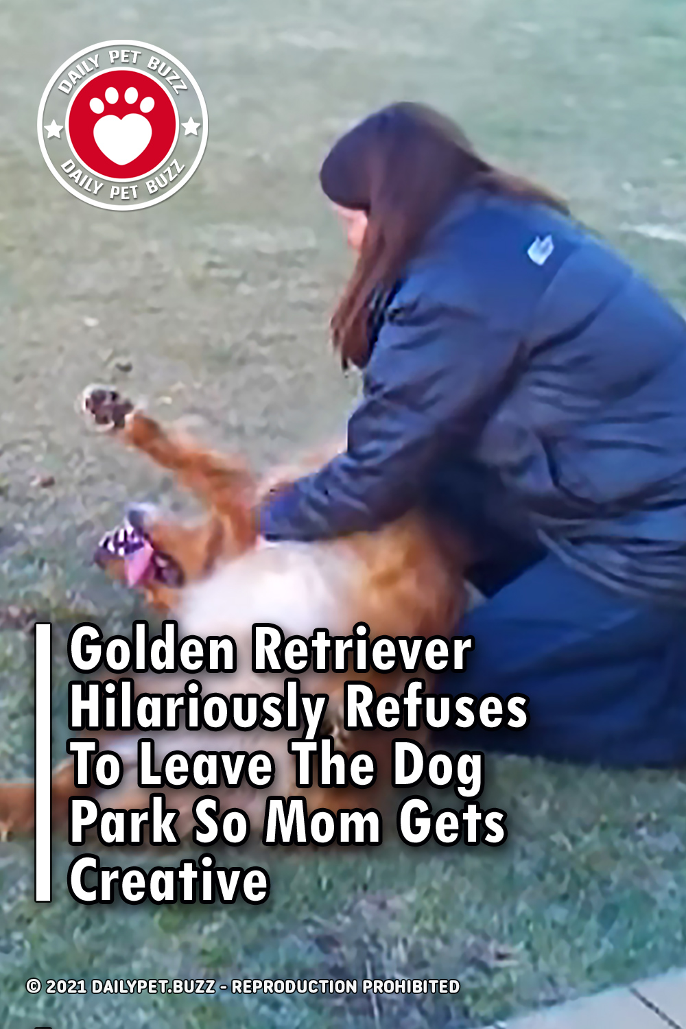 Golden Retriever Hilariously Refuses To Leave The Dog Park So Mom Gets Creative