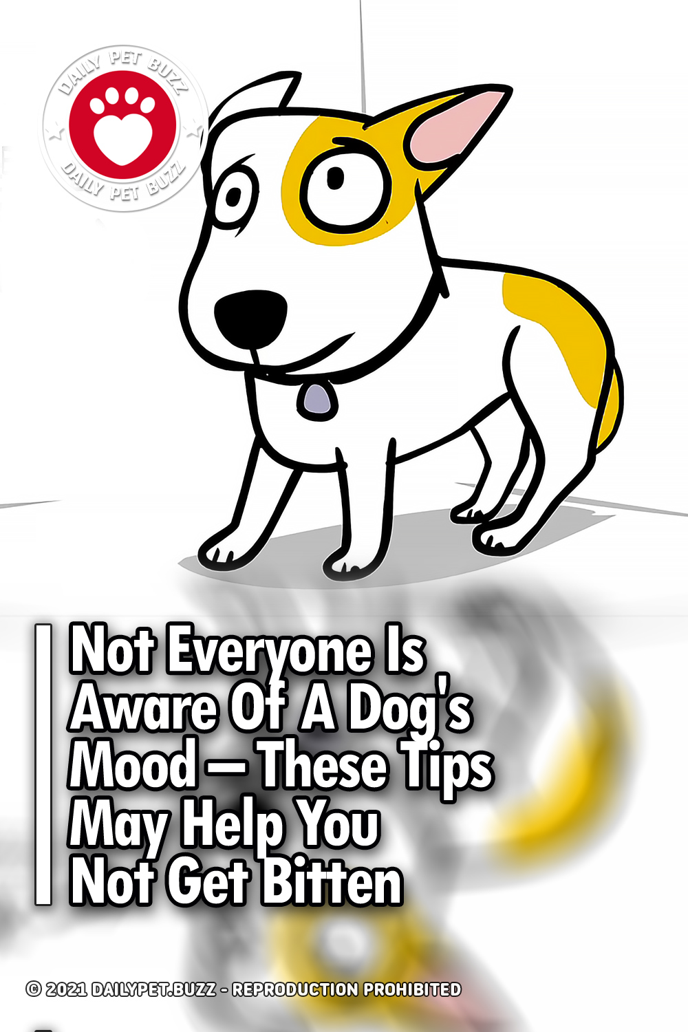 Not Everyone Is Aware Of A Dog\'s Mood – These Tips May Help You Not Get Bitten
