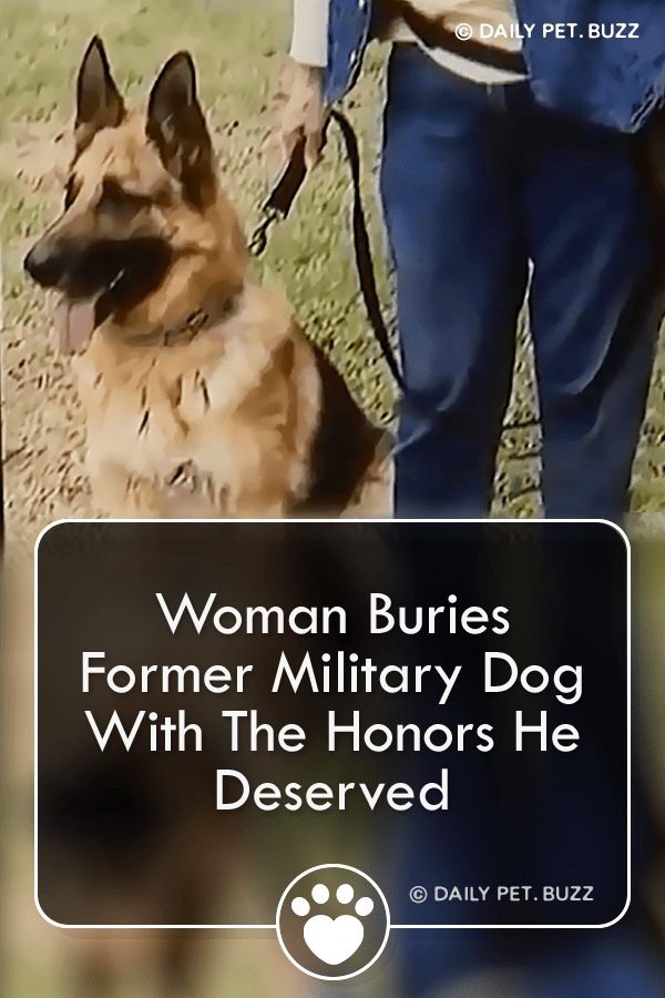 Woman Buries Former Military Dog With The Honors He Deserved