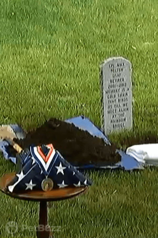 49573-Pinset-Woman-Buries-Former-Military-Dog-With-The-Honors-He-Deserved