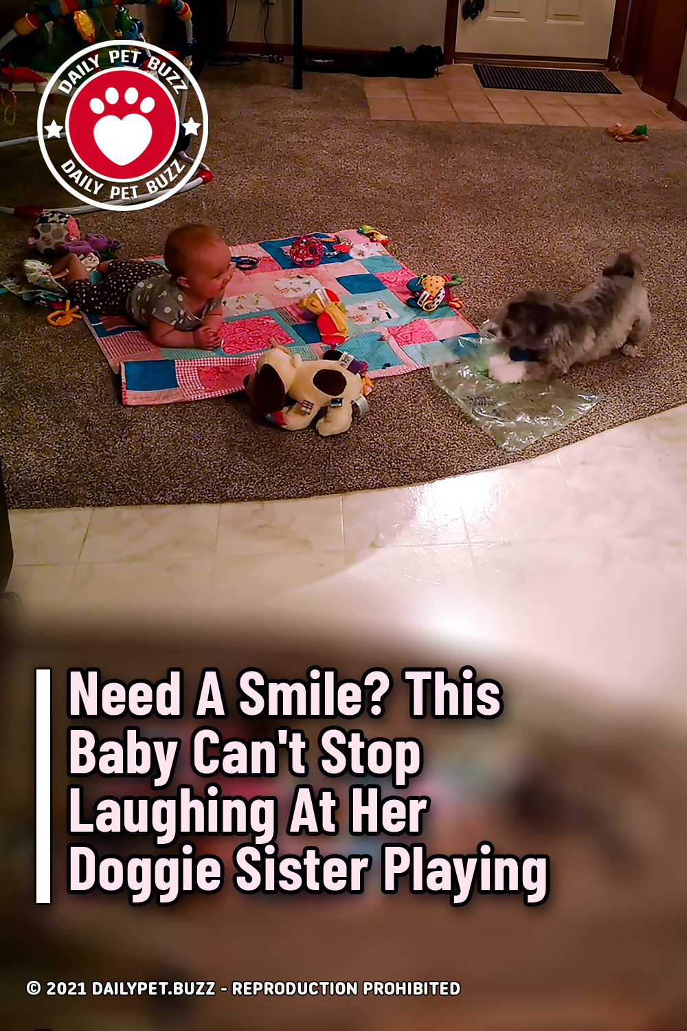 Need A Smile? This Baby Can\'t Stop Laughing At Her Doggie Sister Playing