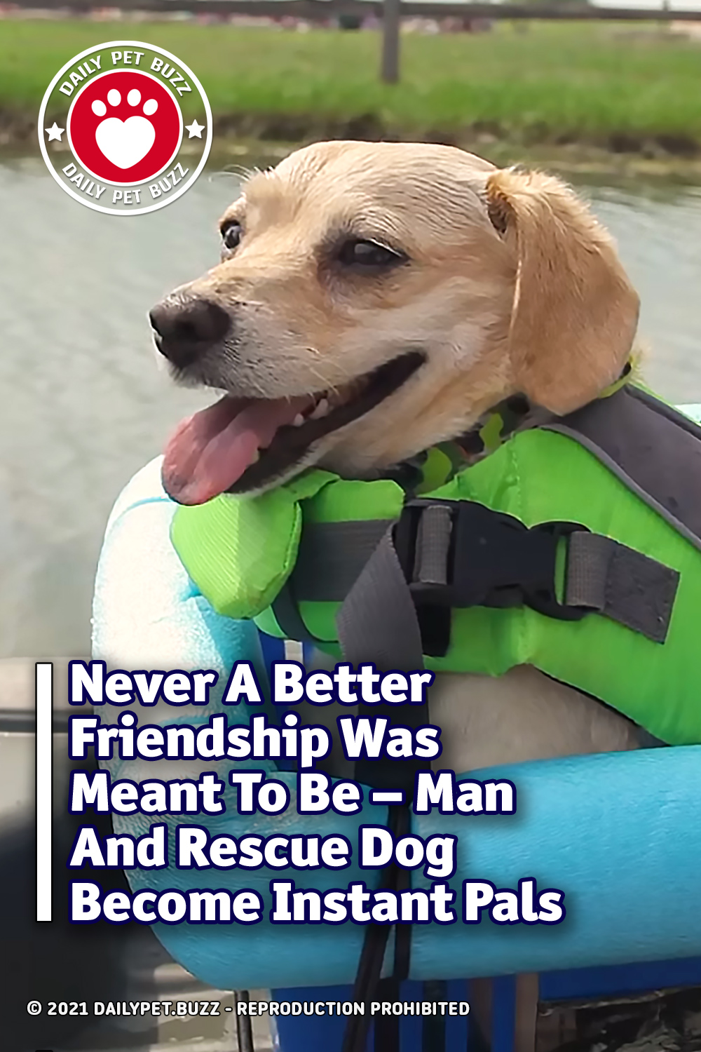 Never A Better Friendship Was Meant To Be – Man And Rescue Dog Become Instant Pals
