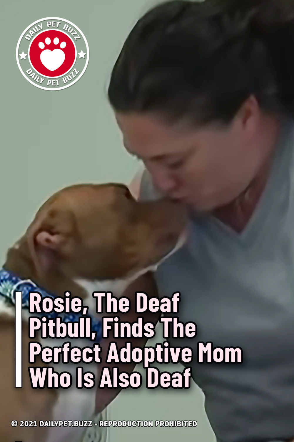Rosie, The Deaf Pitbull, Finds The Perfect Adoptive Mom Who Is Also Deaf