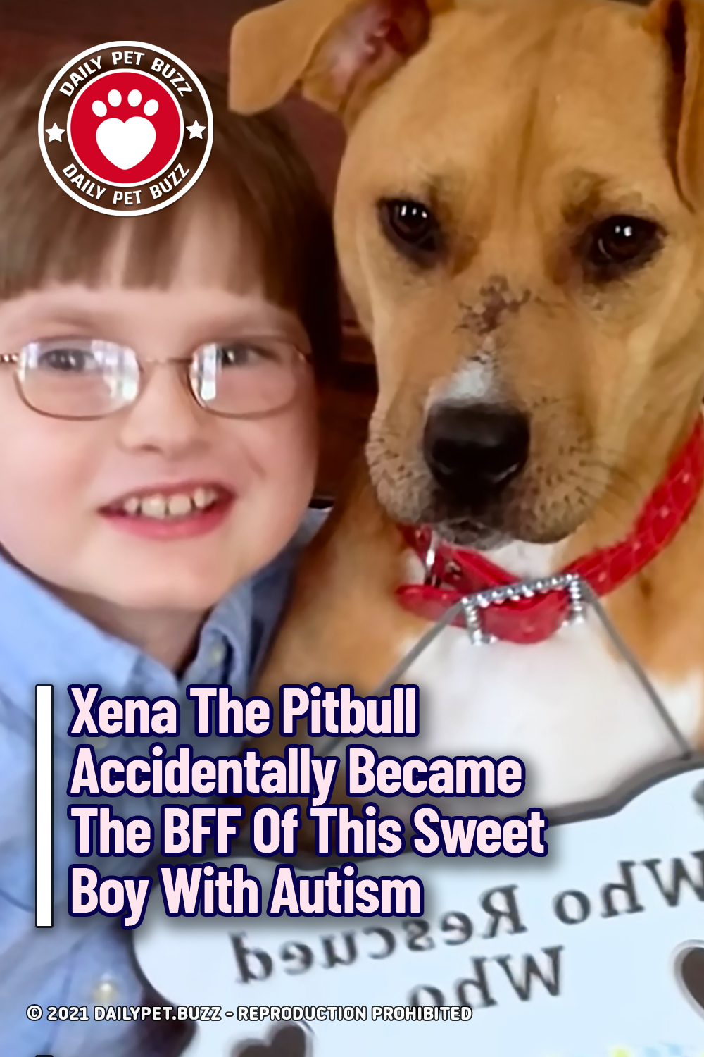Xena The Pitbull Accidentally Became The BFF Of This Sweet Boy With Autism