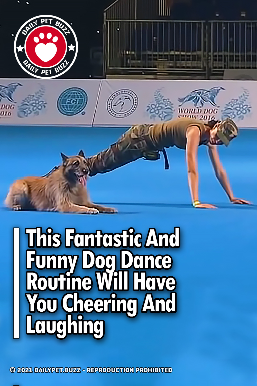 This Fantastic And Funny Dog Dance Routine Will Have You Cheering And Laughing