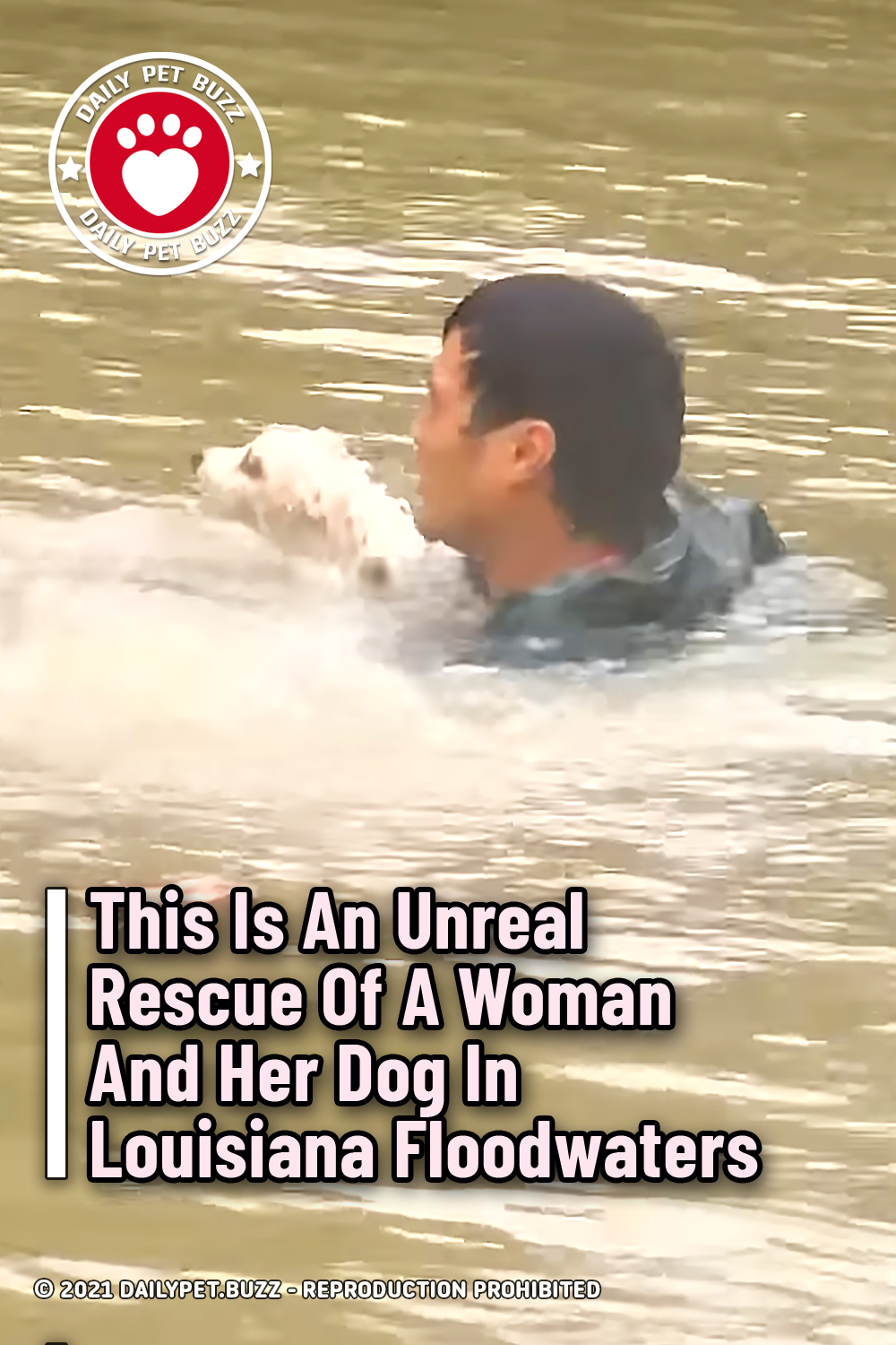 This Is An Unreal Rescue Of A Woman And Her Dog In Louisiana Floodwaters