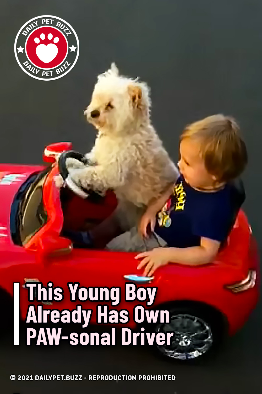 This Young Boy Already Has Own PAW-sonal Driver