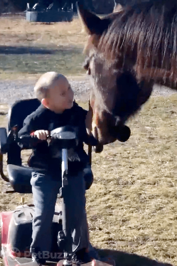24169-Pinset-This-4-Year-Old-Boy-And-His-Pet-Horse-Will-Have-You-Smiling.-These-Two-Share-Such-A-Sweet-Bond