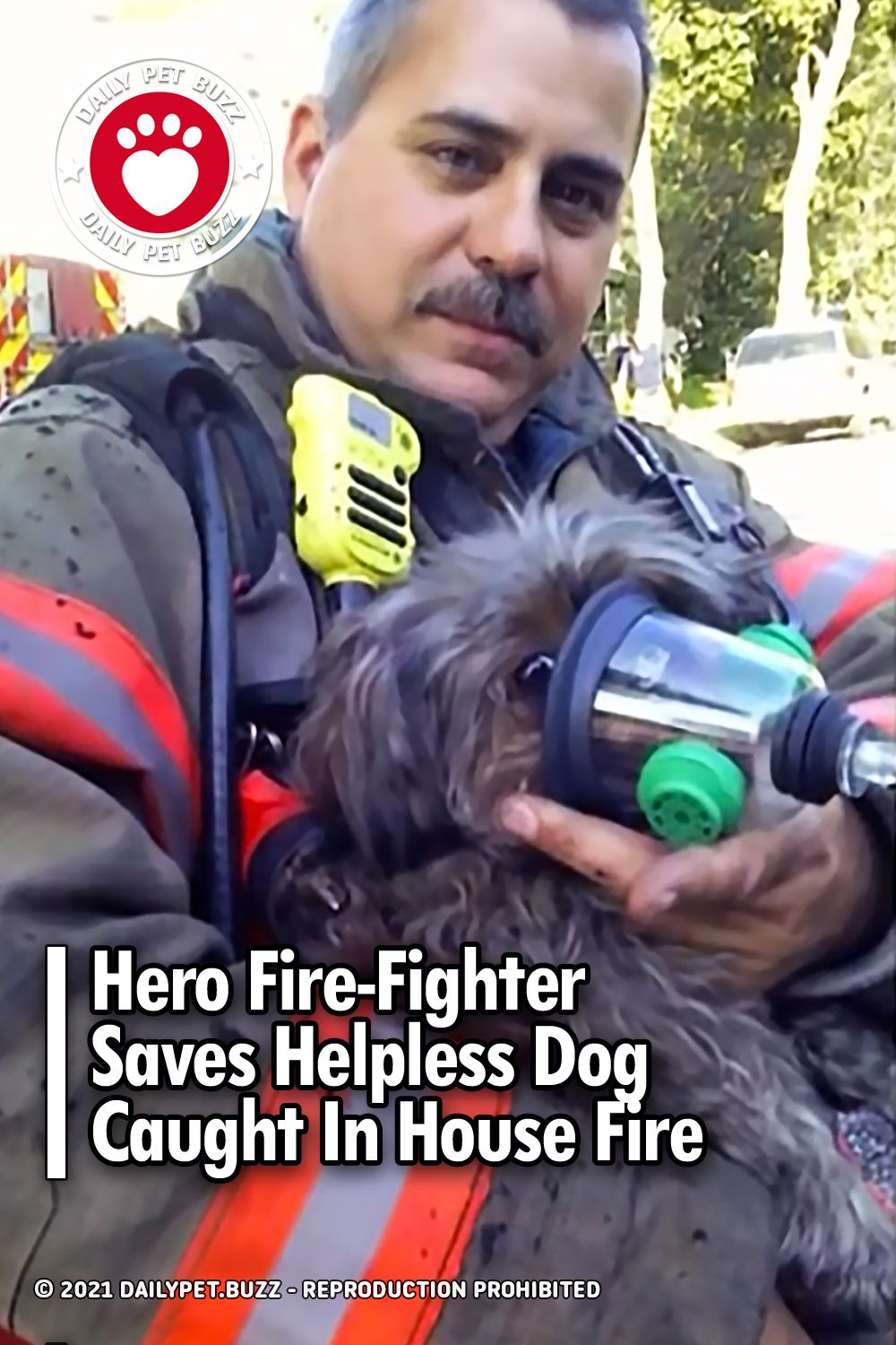 Hero Fire-Fighter Saves Helpless Dog Caught In House Fire