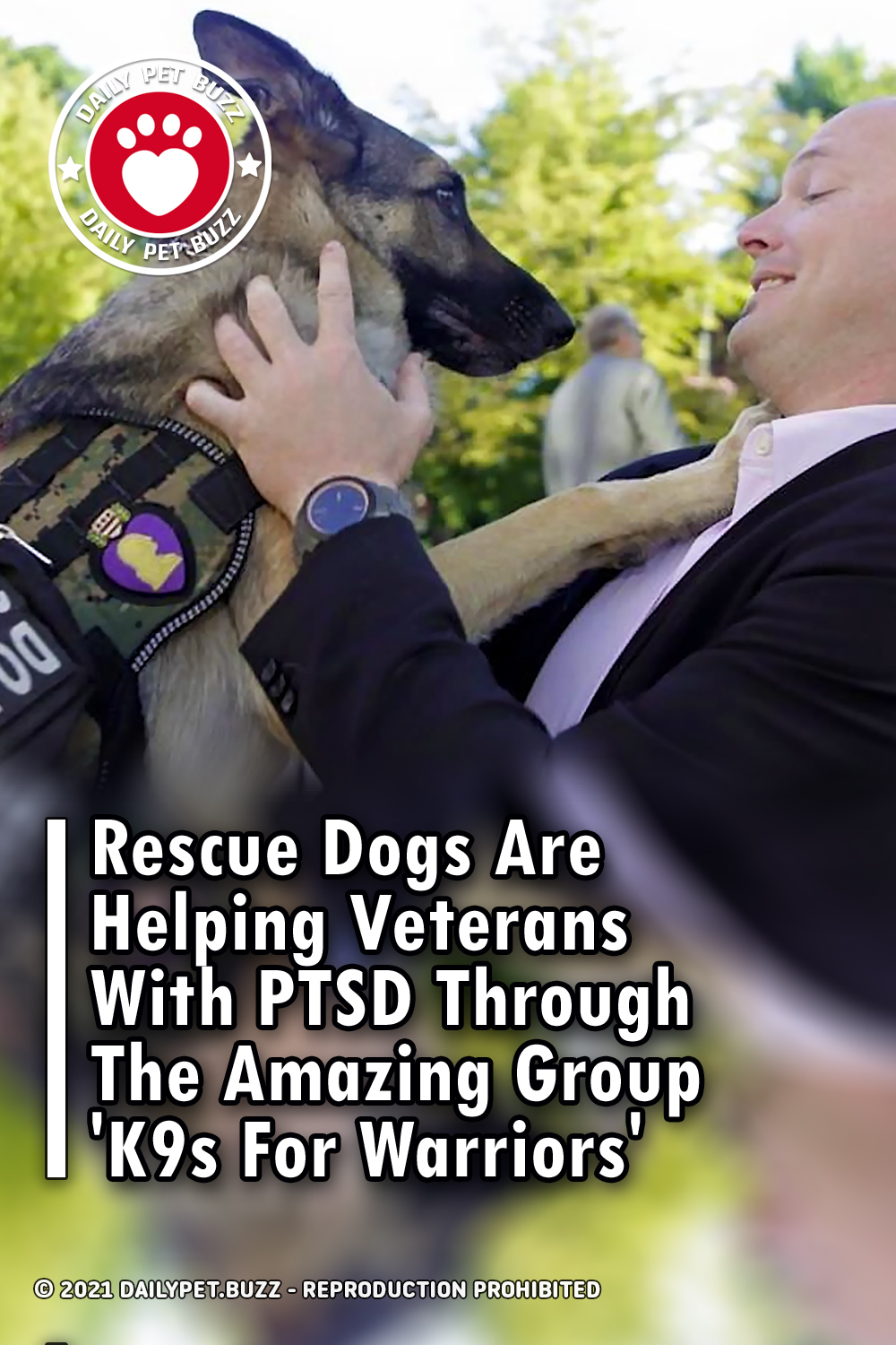 Rescue Dogs Are Helping Veterans With PTSD Through The Amazing Group \'K9s For Warriors\'