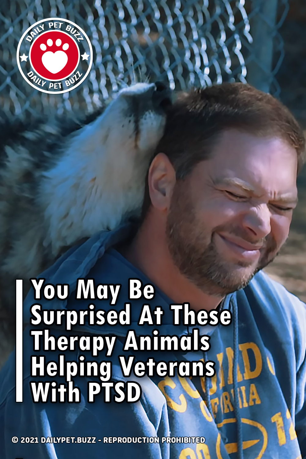 You May Be Surprised At These Therapy Animals Helping Veterans With PTSD