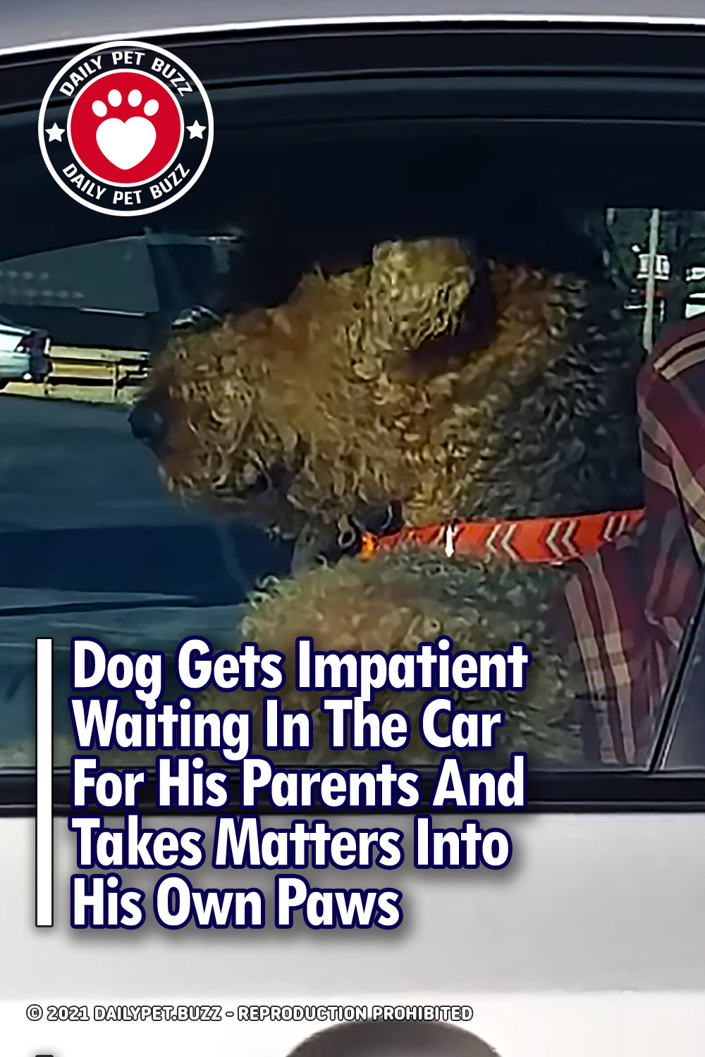 Dog Gets Impatient Waiting In The Car For His Parents And Takes Matters Into His Own Paws