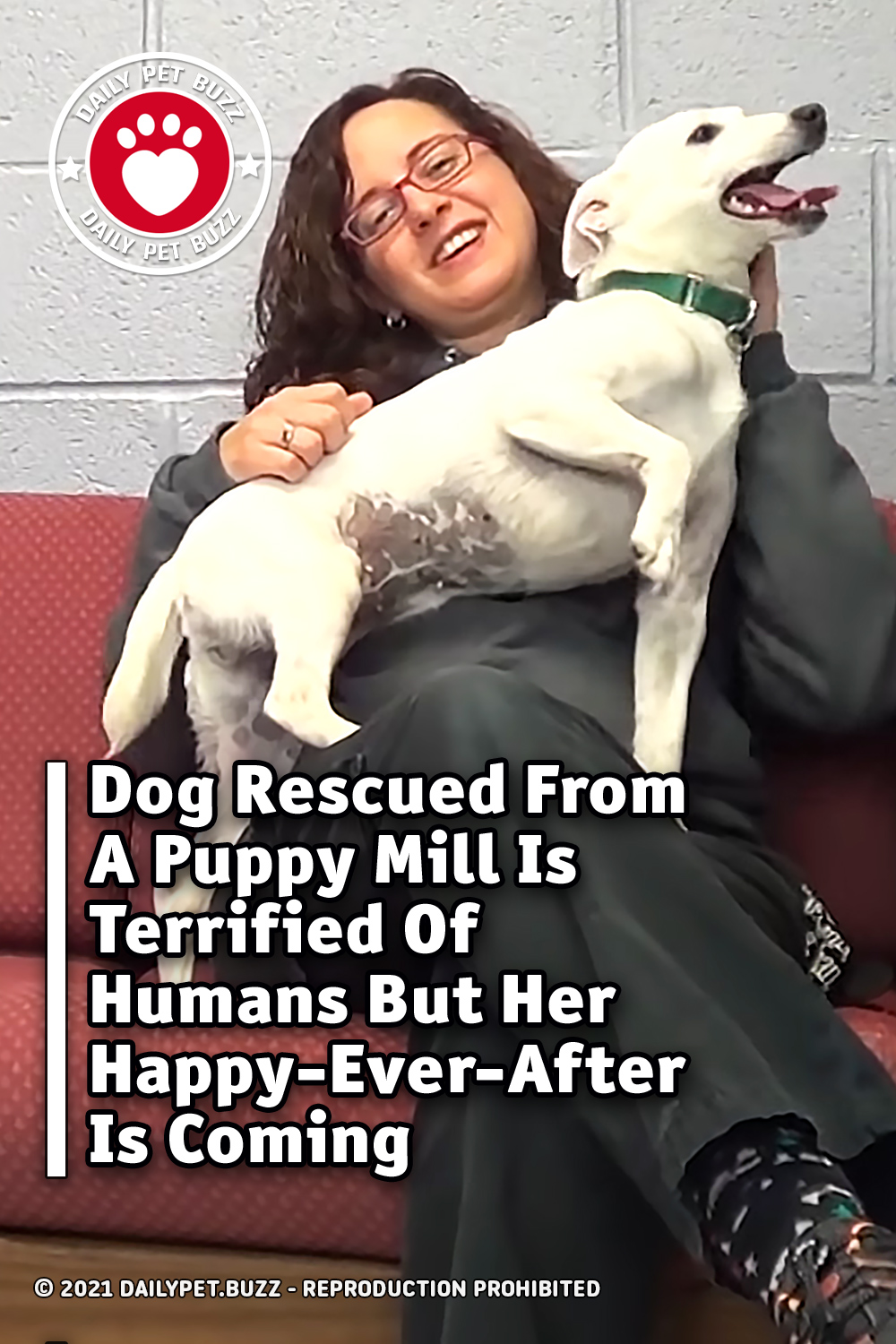 Dog Rescued From A Puppy Mill Is Terrified Of Humans But Her Happy-Ever-After Is Coming