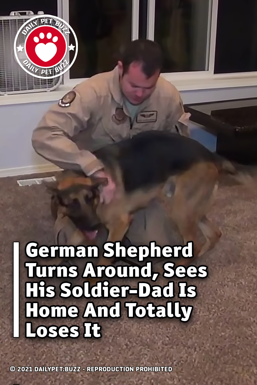 German Shepherd Turns Around, Sees His Soldier-Dad Is Home And Totally Loses It