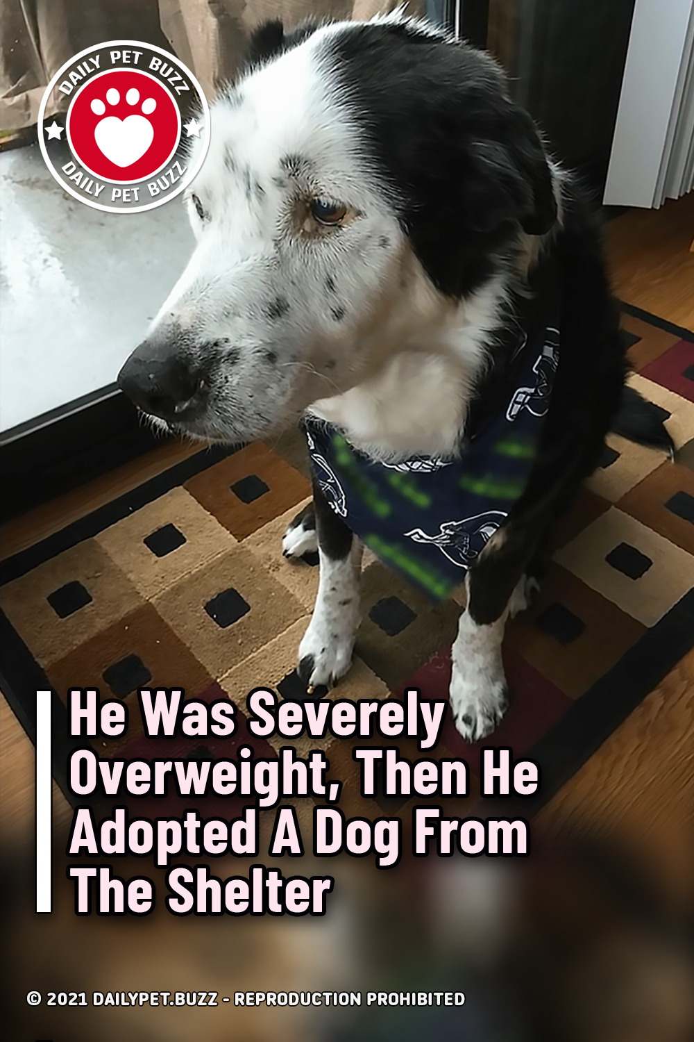 He Was Severely Overweight, Then He Adopted A Dog From The Shelter
